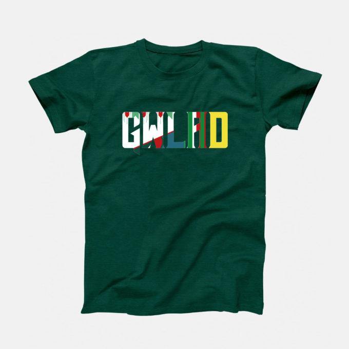 Gwlad Mashup T-Shirt
